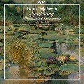 Symphony Op41/Phantasie Concertante