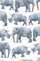 Elephant & Rhino