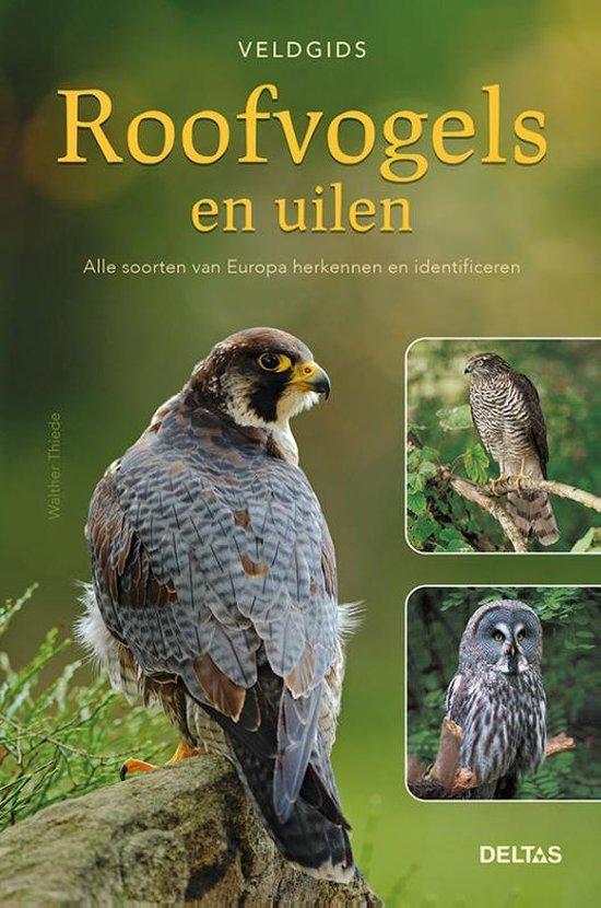 Veldgids - Roofvogels en uilen - Walther Thiede |