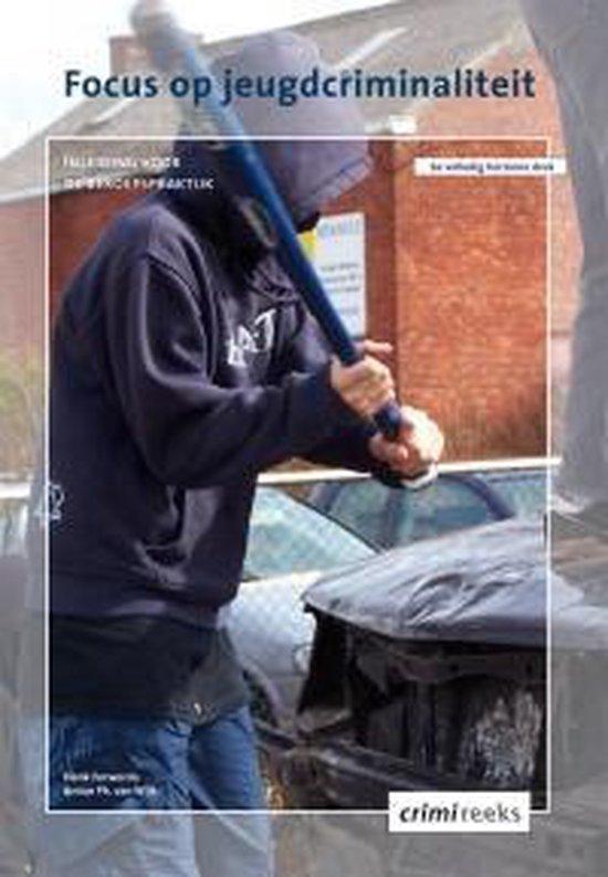 Focus op jeugdcriminaliteit - Henk Ferwerda pdf epub