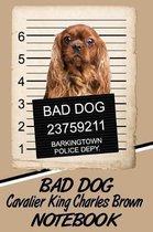 Bad Dog Cavalier King Charles Brown Notebook