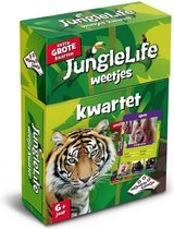 Junglelife Weetjeskwartet - Kaartspel