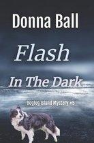 Flash in the Dark