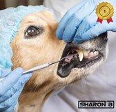 Tandsteen verwijderaar Ultra Q | voor hond en kat | Tandsteen krabber | Tandsteen schraper | Chirurgisch staal | Verwijdert eenvoudig tandsteen en tandplak bij hond en kat | Voorkomt ontstekingen | Gebitsverzorging hond | Mondhygiëne voor hond