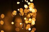IJspegel kerstverlichting voor binnen en buiten -