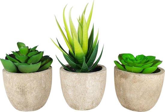 GreenDream Kunstplanten - Kamerplanten - Nep planten - Vetplanten - 3 stuks