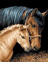 Eagle® Schilderen op Nummer Volwassenen - Paard met Veulen - Gespannen op Houten Frame - 50x40cm