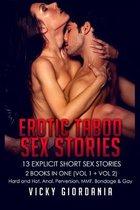Erotic Taboo Sex Stories 13 Explicit Short Stories
