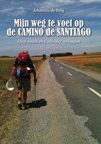 Mijn weg te voet op de camino de santiago - diep weten en collectief verlangen