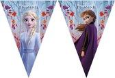 Disney Frozen 2 vlaggenlijn 2 meter - Kinderfeestje/verjaardag vlaggenlijn