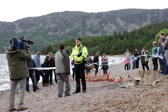 Loch Ness - Seizoen 1 - Tv Series