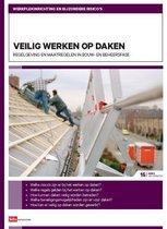 AI-15: Veilig werken op daken