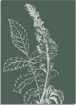 DesignClaud Vintage bloem blad poster - Groen - Puur Natuur Botanische poster A4 + Fotolijst wit