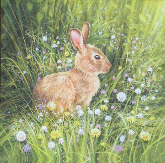 Servetten Little Rabbit