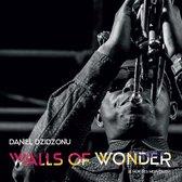 Walls Of Wonder