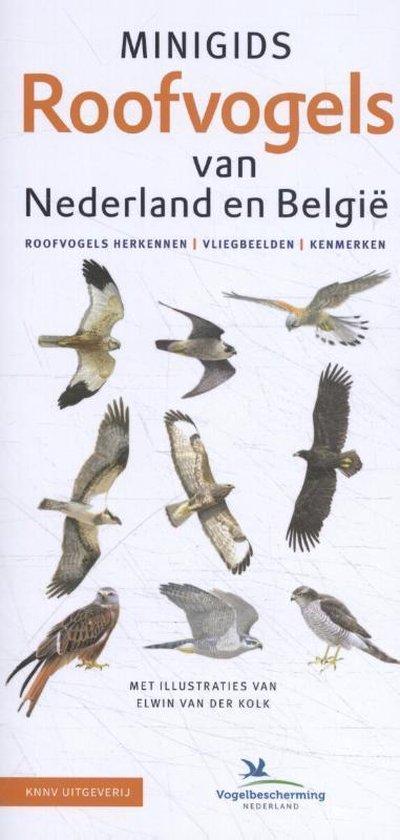 Boek cover Minigids  -   Minigids Roofvogels van Nederland en België van Jip Louwe Kooijmans (Onbekend)