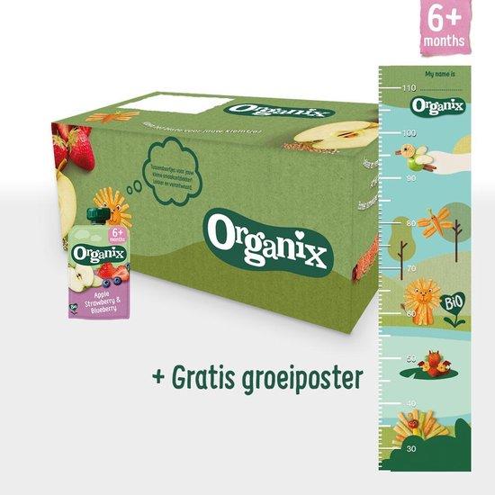 Organix Knijpfruit Maandbox - Vanaf 6 Maanden - Biologisch - 30 Stuks -...