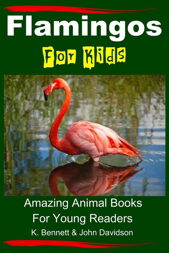 Flamingos For Kids: Amazing Animal Books For Young Readers