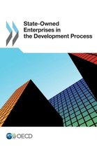 State-owned enterprises in the development process