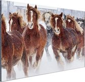 Hardlopende paarden in de sneeuw Aluminium 120x80 cm - Foto print op Aluminium (metaal wanddecoratie)