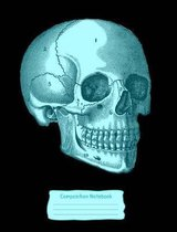Turquoise Blue Skull Composition Notebook