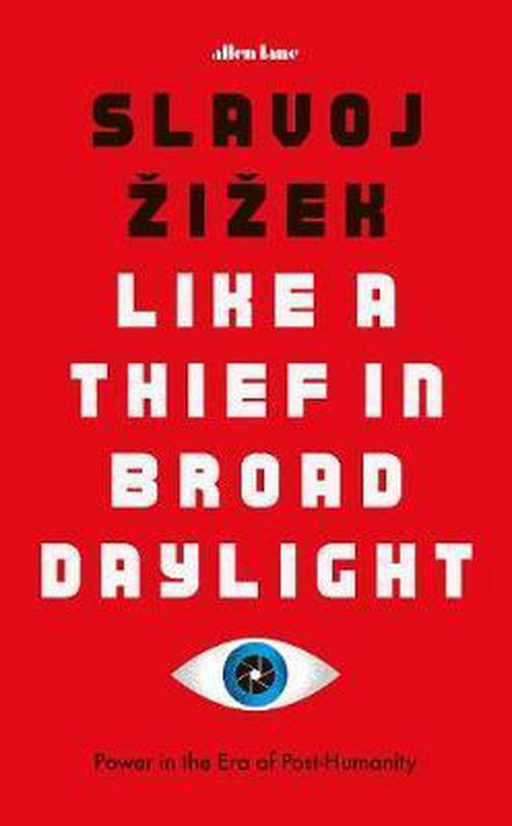 Like A Thief In Broad Daylight - Slavoj Zizek