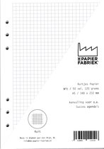 Aanvulling Ruit 120g/m²  Wit Notitiepapier voor A5 Succes, Filofax of Kalpa   Organizers 100 Pag
