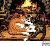 """Schilderen op nummer """"JobaStores®"""" Katten bij haard 40x50cm"""