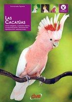 Las cacatúas: Como elegirlas, cuidados diarios, comportamiento, alimentacion, reproduccion, exposiciones…