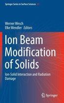 Boek cover Ion Beam Modification of Solids van