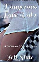 Dangerous Love Vol 1