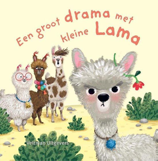 Een groot drama met Kleine Lama - Anna Taube pdf epub