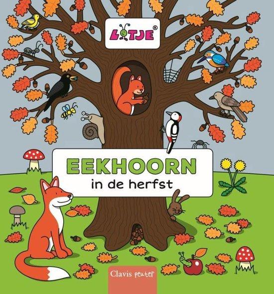 Eekhoorn in de herfst - Lotje | Readingchampions.org.uk