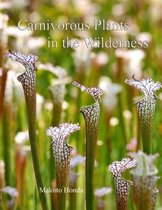 Carnivorous Plants in the Wilderness