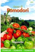 Tomaten Pomodori Tigerella - Lycopersicon esculentum - set van 6 stuks