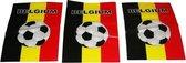 België Vlaggenlijn - 10 meter