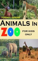 Today I Show Animals In Zoo For Kids Only