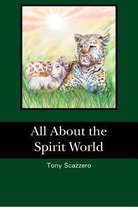 All about the Spirit World