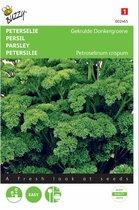 Peterselie Gekrulde Donkergroene - Petroselinum crispum - set van 8 stuks