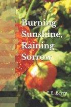 Burning Sunshine, Raining Sorrow