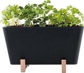 Waterwick PlantBox - Zwart - 19 x 13,5 x 15 cm (lxbxh) - (zonder zaadjes)