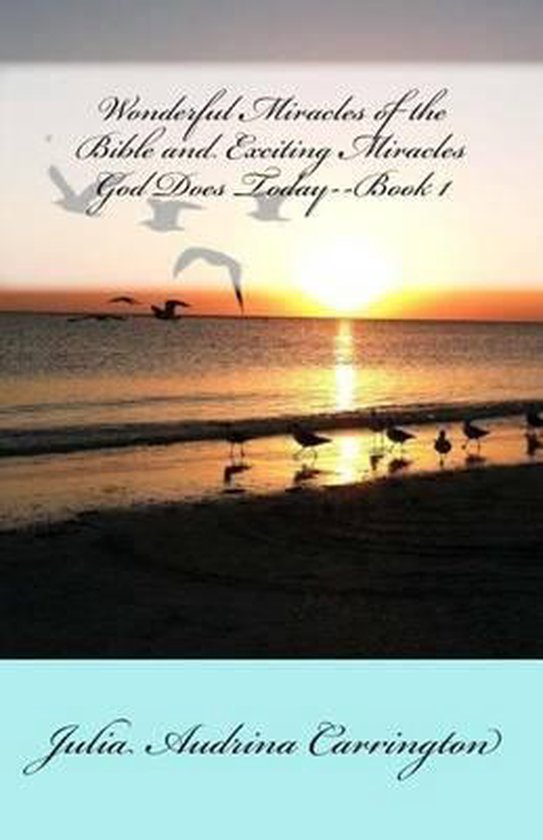 Boek cover Wonderful Miracles of the Bible and Exciting Miracles God Does Today--Book 1 van Julia Audrina Carrington (Paperback)