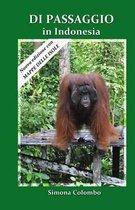 Di Passaggio in Indonesia