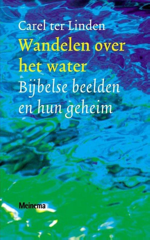Wandelen over het water - Carel ter Linden  