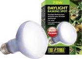 Exo Terra Sun Glo Basking pot Lamp - Terrarium Verlichting - 75W
