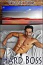 Hard Boss (Gay MM Erotic Romance)