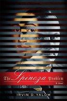 Boek cover The Spinoza Problem van Irvin D. Yalom