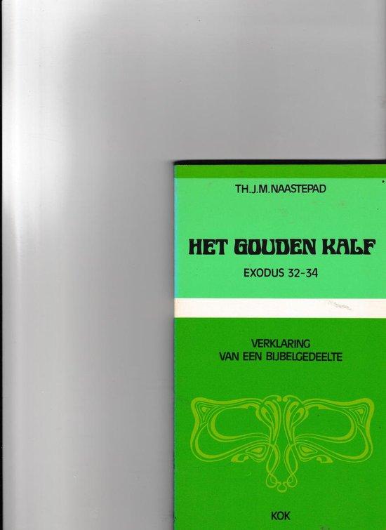 Het gouden kalf - Th.J. Naastepad pdf epub