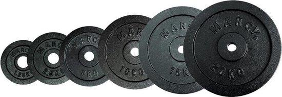 Tunturi Halterschijven - Halter gewichten - 2 x 0.50 kg - Ø 30 mm - Gietijzer