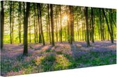 Kleurrijke bloemen in het bos Canvas 120x80 cm - Foto print op Canvas schilderij (Wanddecoratie woonkamer / slaapkamer) / Wanddecoratie Canvas Schilderijen